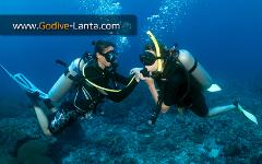 SSI Open Water Diver to Dive Instructor
