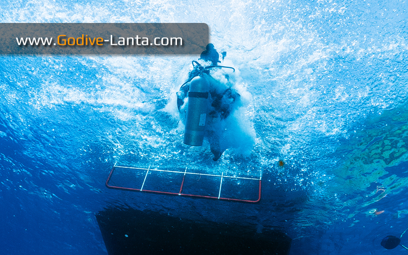 [ Online ] SSI Waves, Tides & Current Course 2 Dives