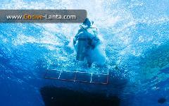 SSI Waves, Tides & Current Course 2 Dives