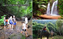 Excursion Trip (Half Day) : Elephant Trekking - Waterfall & Explore Cave for Family