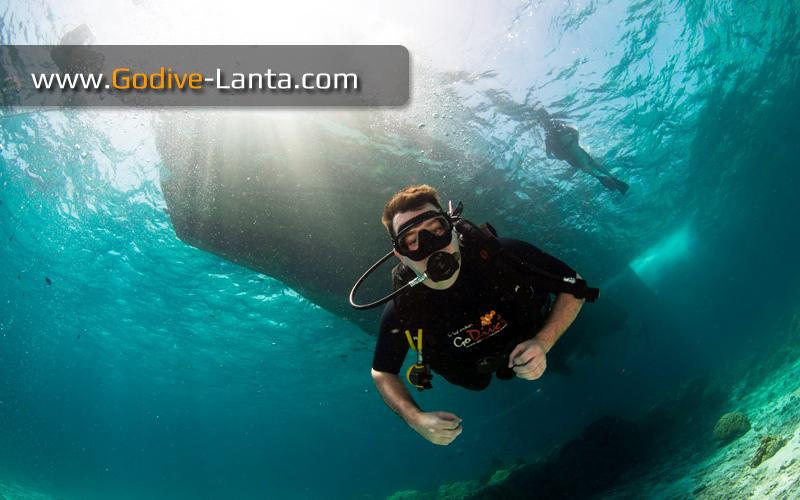 [ Online ] SSI Scuba Diver Course