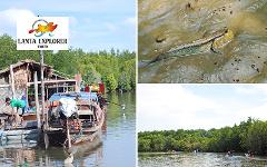 Sightseeing Trip (Half Day) : Explore Mangrove (by Kayak or Longtail Boat)