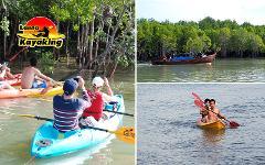 Sightseeing Trip (Half Day) : Mangrove by Kayak or Longtail Boat
