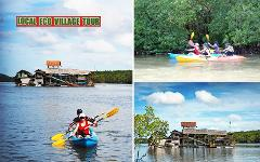 Sightseeing Trip (Half Day) : Mangrove by Kayak or SUP or Longtail Boat