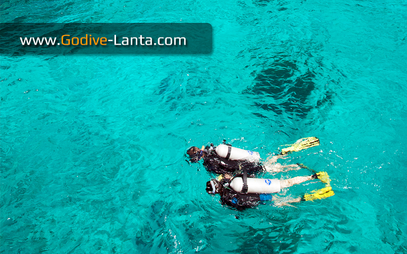 [ Online ] Package Diving - 2 Days 4 Dives