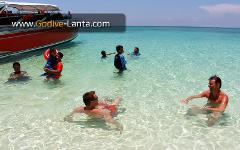 Private Speed Boat : Snorkelling Trip