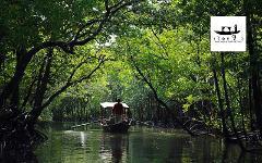 "Sightseeing Trip (Half Day) : Mangrove Tour by Thai Local Boat ""Gondola"""
