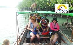 Sightseeing Trip (Half Day) : Mangrove by Longtail Boat