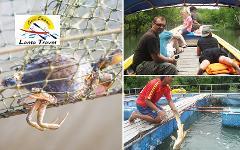 Excursion Trip (Half Day) : Crabbing Tour - Explore mangrove