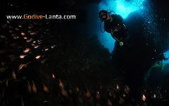 SSI Advanced Adventurer Course PLUS 6 Dives