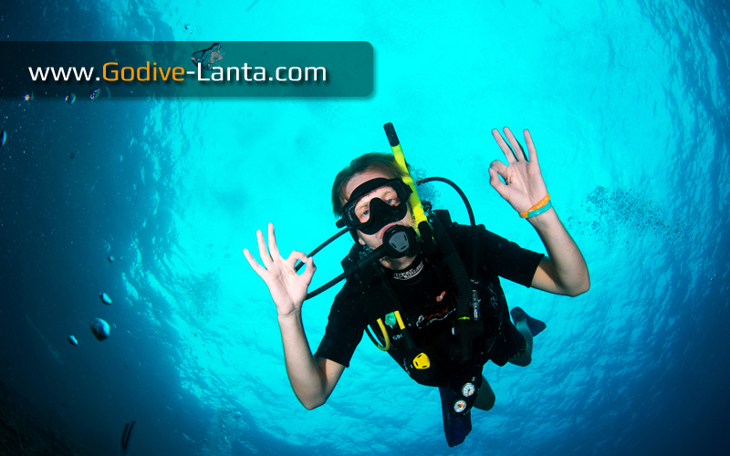 [ Online ] SSI Open Water Diver Course