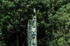 Sumbiling Eco Village & Ulu Temburong National Park Canopy Walk (2D1N)