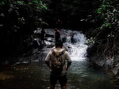 Complete Rainforest Experience (3D2N)