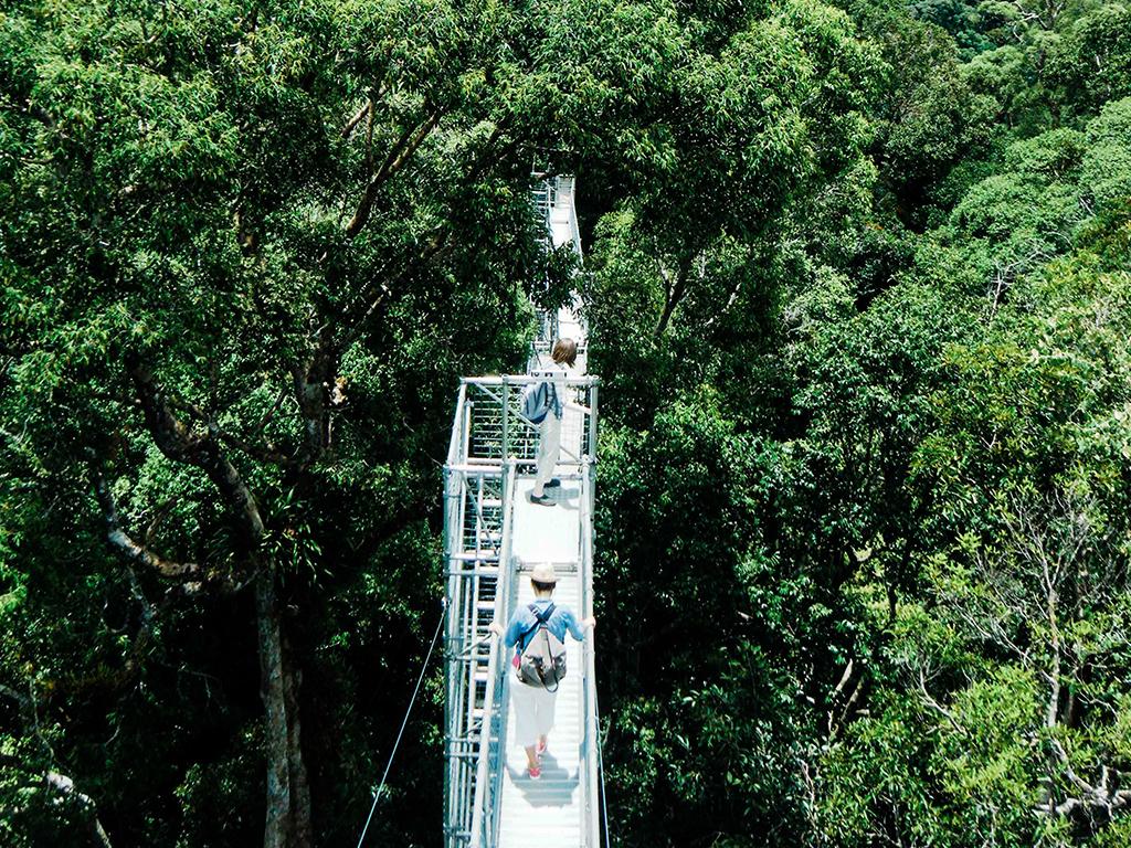 Sumbiling Eco Village & Ulu Temburong National Park Canopy Walk (Overnight)