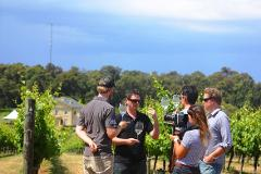 Busselton Skydive and Wine Tour