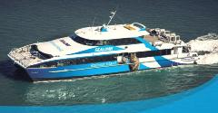 Rottnest Skydive and Sealink ex Fremantle Ferry Package