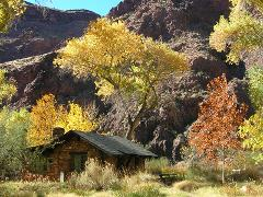 Phantom Ranch Natural and Cultural History (Coed) 1115