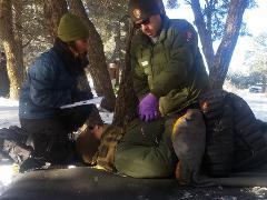 Wilderness First Responder Recertification (Feb 19) (Canceled)