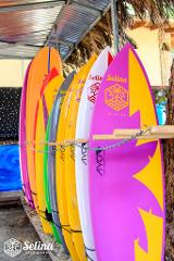 Surfboard rent full day