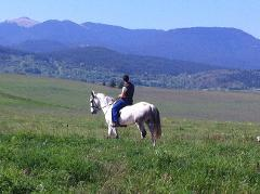 Horseback Riding in the Pyrenees - 4 days