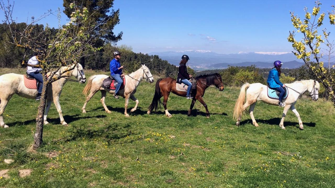 Horseback riding in the Pyrenees