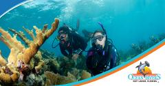 Reef Dive / Snorkel (Two Tank / Site)