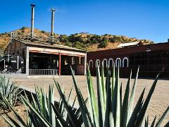 Tequila and Distillery Tour
