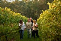 Pemberton Wine Discovery Tour