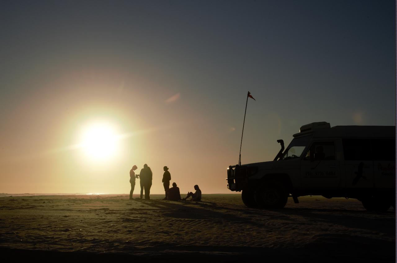 Twilight Dune Safari
