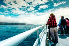 Wineglass Bay Cruises - Vista Lounge (Bring Your Own Lunch)
