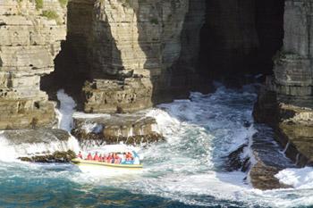 Tasman Island Cruises 3 Hour Cruise Tasmania Australia