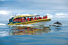 Bruny Island Cruises Full Day Tour from Hobart