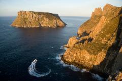 Tasman Island Cruises Full Day Tour from Hobart