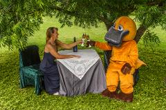 Romancing the Platypus - Dinning in the Rainforest