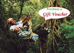 Karkloof Canopy Tour Gift Voucher