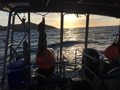 Magnetic Island Night Dive