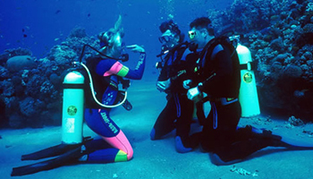 Open Water Scuba Instructor Course
