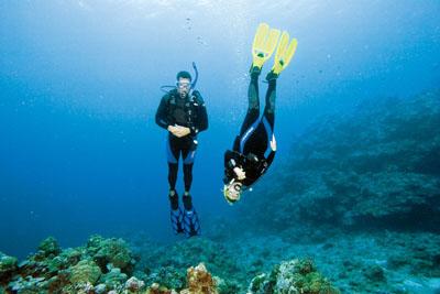Advanced Open Water Safari