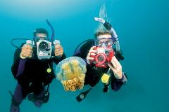 Underwater Photographer Course