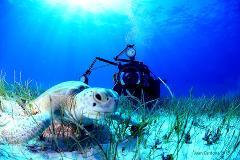 Underwater Photographer Course