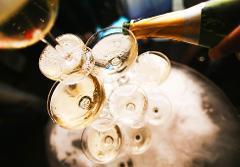Show & 1/2 Bouteille de Champagne
