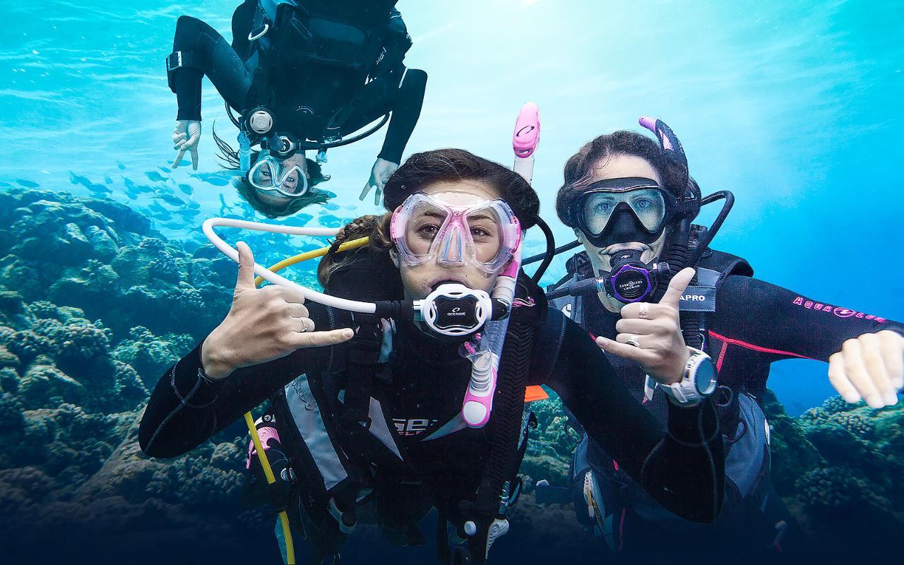 Rescue Diver + EFR