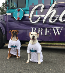 Specialty Tour - January 6th Bark N Brew Pup Crawl!