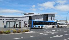 CITY TRANSFER: Hamilton Transport Centre to Raglan