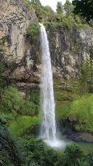 Tour from Hamilton to Bridal Veil Falls & Raglan Town Experience