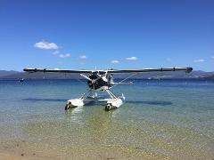 The Tassie Beach Picnic