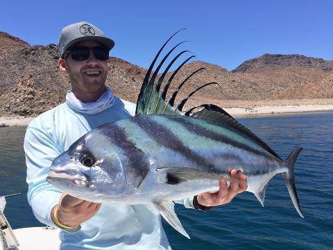 1 Day Sportfishing La Paz 24- 26ft Boat