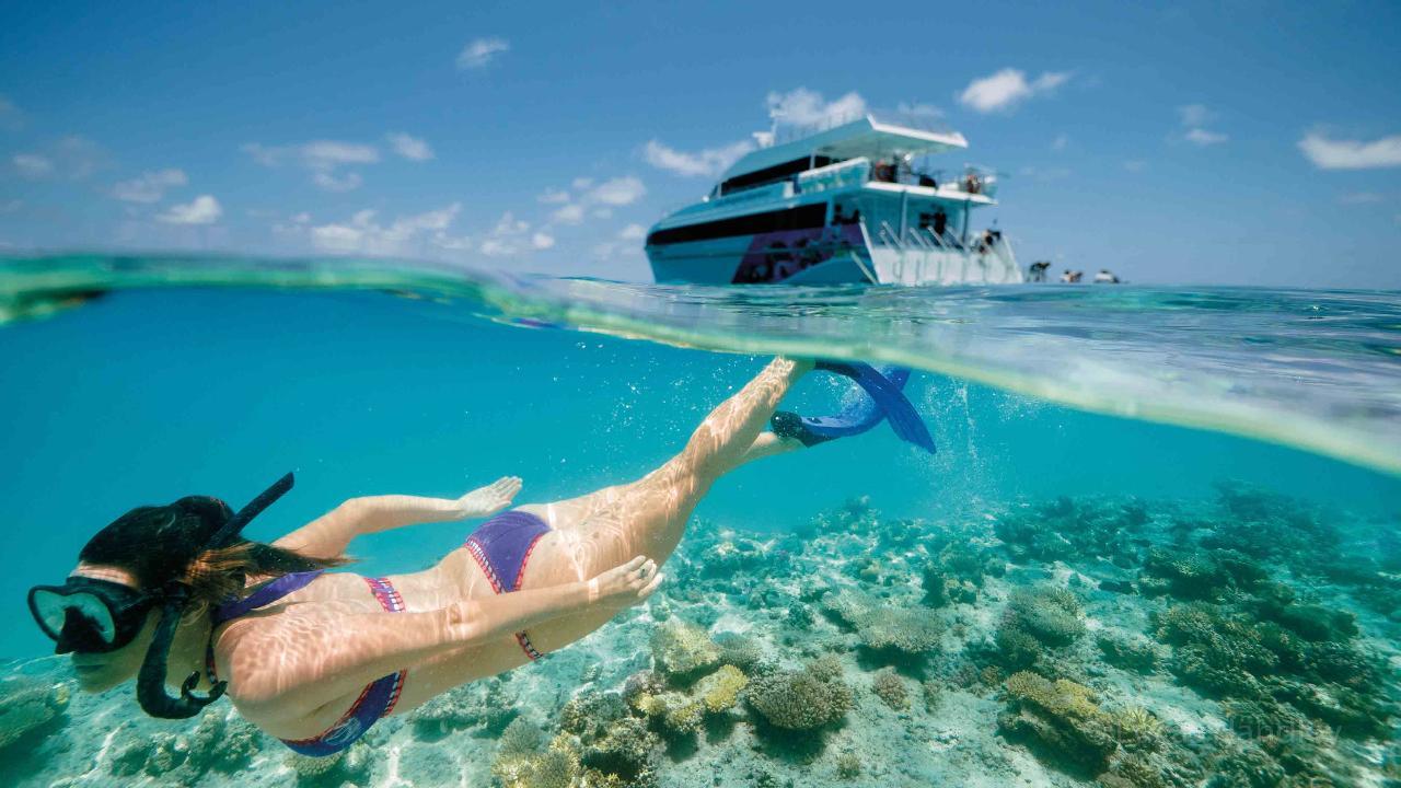 3-Day Great Barrier Reef Tour - Ex Brisbane