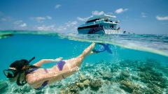 3-Day Great Barrier Reef Tour - Ex Brisbane