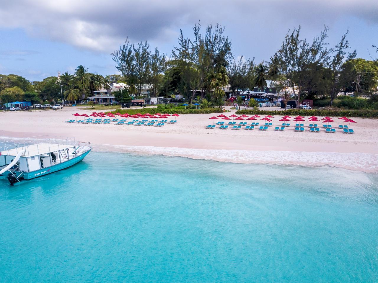Beach Lounger & Turtle Snorkel Tour Combo